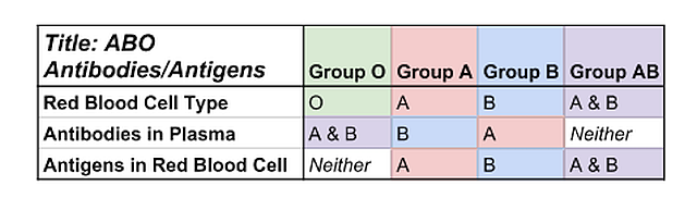 antibodies_and_antigens